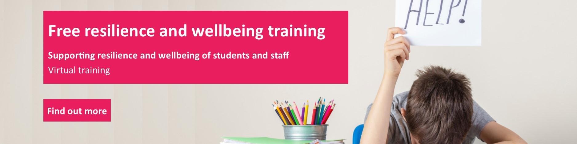 Resilience and wellbeing training