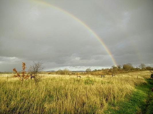 A picture of a rainbow