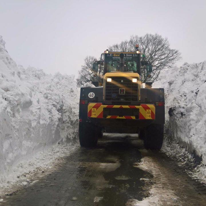 Gritting