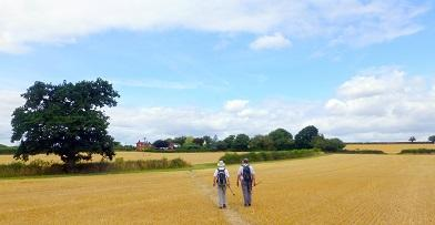 In association with Worcestershire County Council, The Millennium Way team from 41 Club is hosting its first ever walking festival.