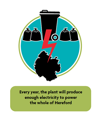 Every year, the plant will produce